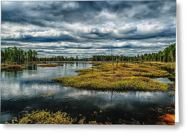 New Jersey Pine Barrens Greeting Cards - Storm at Franklin Parker Preserve - Pinelands Greeting Card by Louis Dallara