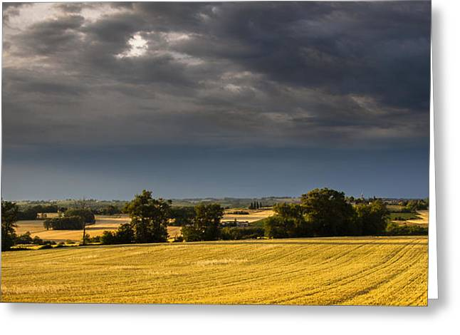 Storm Brewing Over Corn Greeting Card by Matthew Bruce