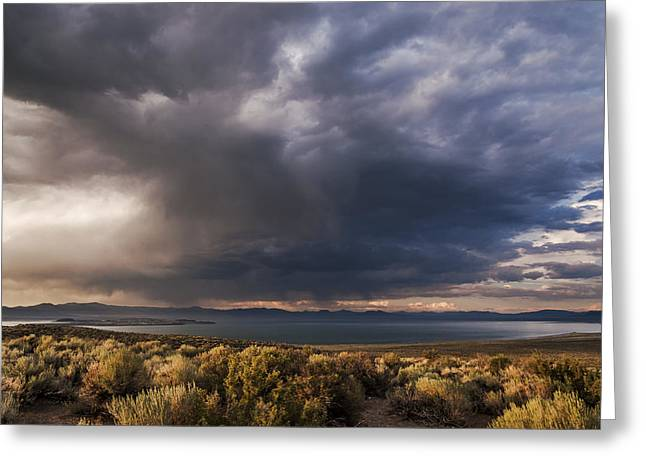 Desert Lake Greeting Cards - Storm Cell over Mono Lake Greeting Card by Cat Connor