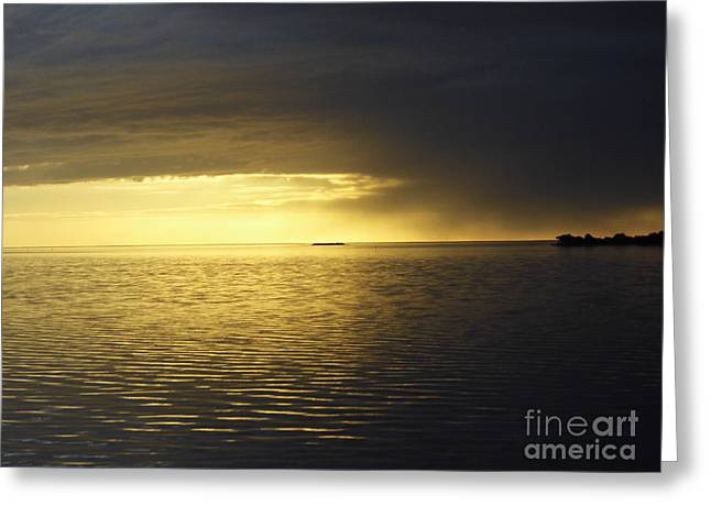 Cedar Key Greeting Cards - Storm Clouds At Sunset Greeting Card by D Hackett