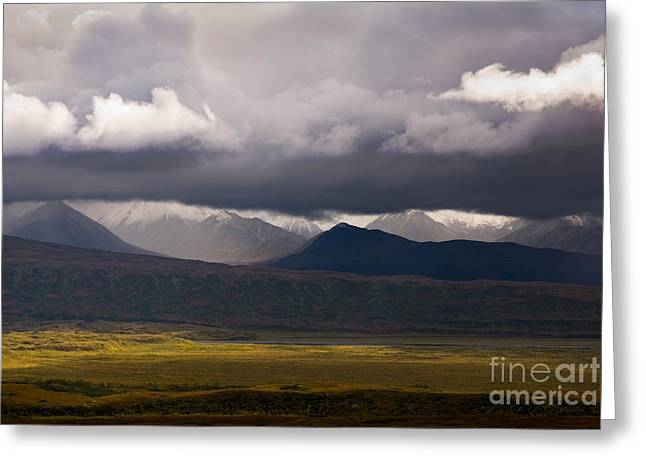 Grey Clouds Greeting Cards - Storm Clouds, Denali National Park Greeting Card by Ron Sanford