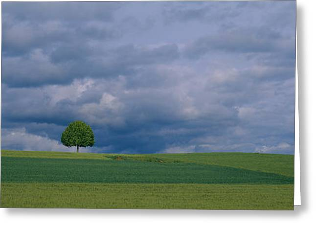 Field. Cloud Greeting Cards - Storm Clouds Over A Field, Zurich Greeting Card by Panoramic Images