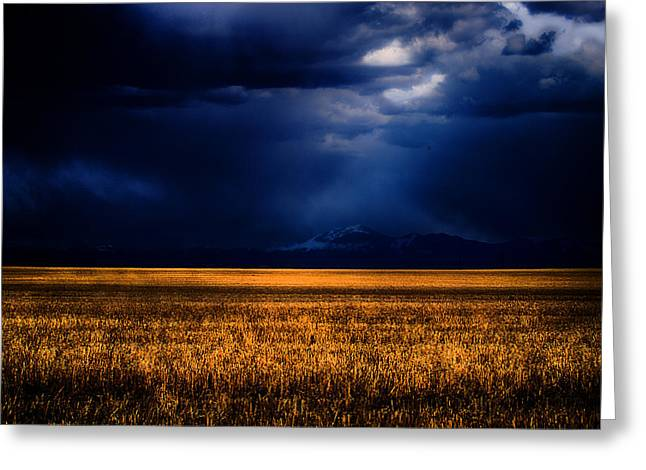 Montana Greeting Cards - Storm Clouds Over The Timberline Greeting Card by Joshua Dwyer