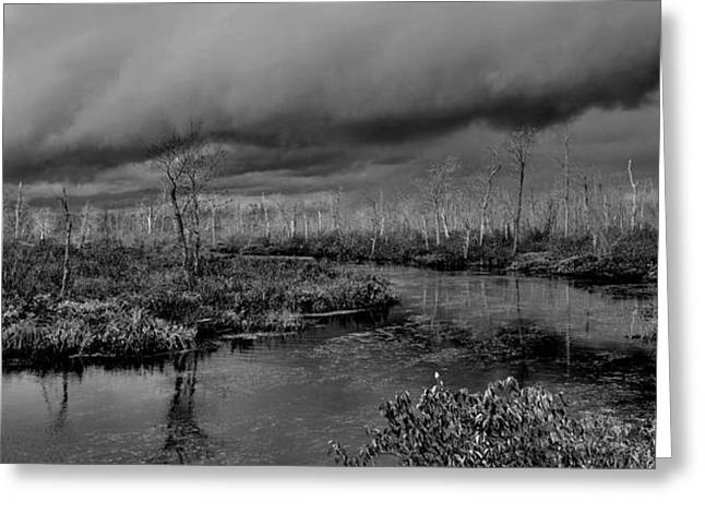 Reflection In Water Greeting Cards - Storm Imminent - Canada Greeting Card by Jeremy Hall