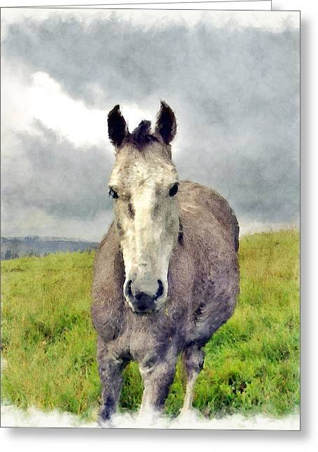 Equestrianism Greeting Cards - Storm Greeting Card by Kurt Van Wagner