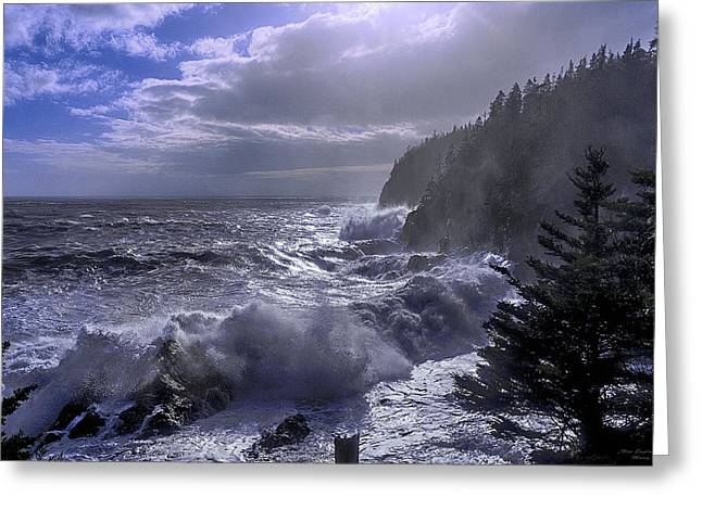 Quoddy Head State Park Greeting Cards - Storm Lifting at Gullivers Hole Greeting Card by Marty Saccone