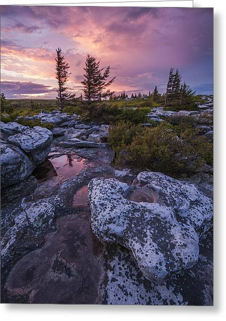 West Virginia Greeting Cards - Storm Light Greeting Card by Joseph Rossbach