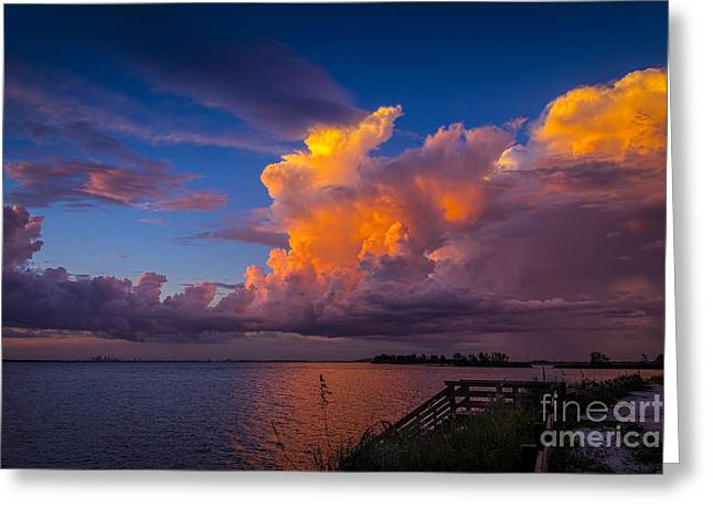 Tampa Bay Greeting Cards - Storm on Tampa Greeting Card by Marvin Spates