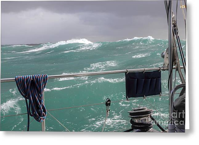 Blue Green Wave Greeting Cards - Storm on Tasman Sea Greeting Card by Jola Martysz