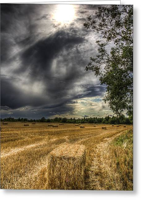 Farmers Field Greeting Cards - Storm on the Farm Greeting Card by David Pyatt