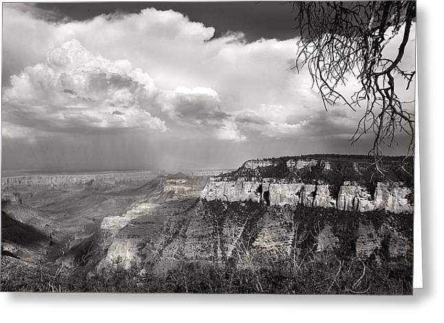 Passing Storm Greeting Cards - Storm Over Canyon Greeting Card by Joseph G Holland