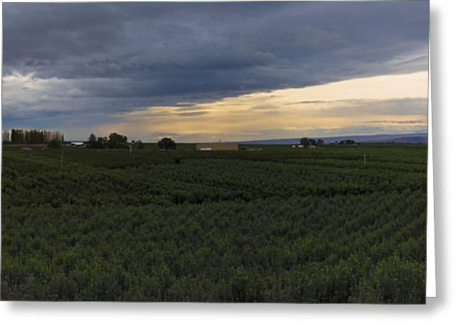 Orchard Greeting Cards - Storm over the Yakima Valley Greeting Card by Mike  Dawson