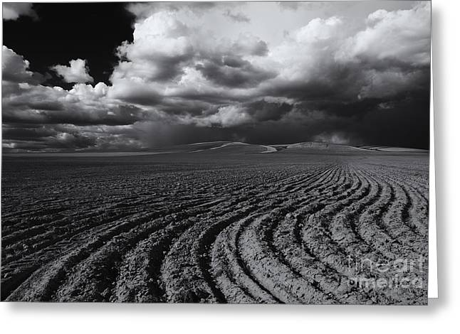 Plowed Fields Greeting Cards - Storm Path Greeting Card by Mike  Dawson