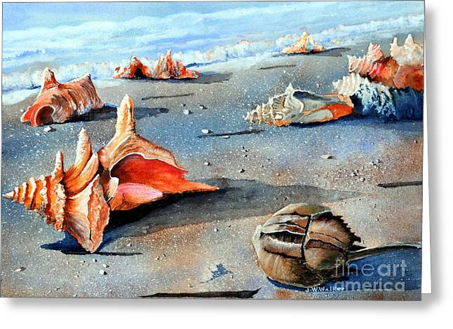 Sea Shell Greeting Cards - Storm Treasures Greeting Card by John W Walker