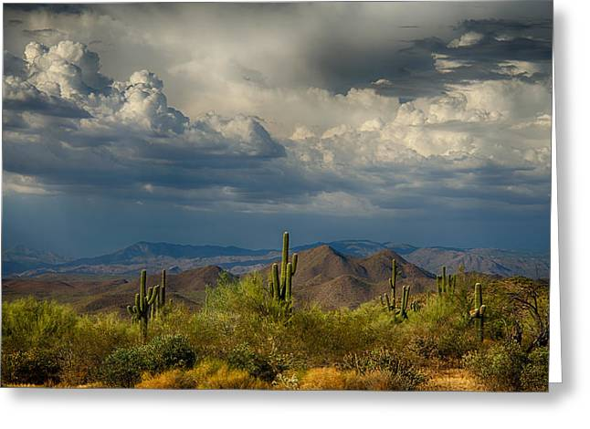 Monsoon Clouds Greeting Cards - Storms Over the Sonoran Desert  Greeting Card by Saija  Lehtonen