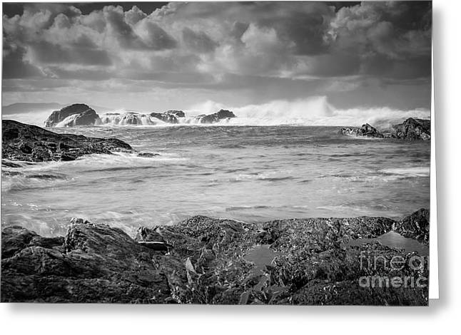 Port Renfrew Greeting Cards - Stormy Greeting Card by Carrie Cole