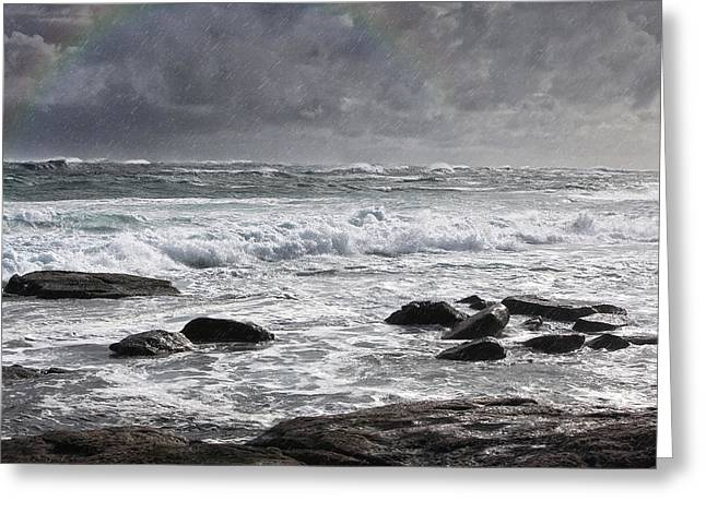 Stormy Coast Greeting Card by Niel Morley
