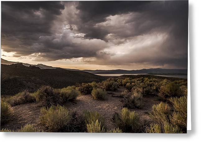 Desert Lake Greeting Cards - Stormy Day at Mono Lake Greeting Card by Cat Connor
