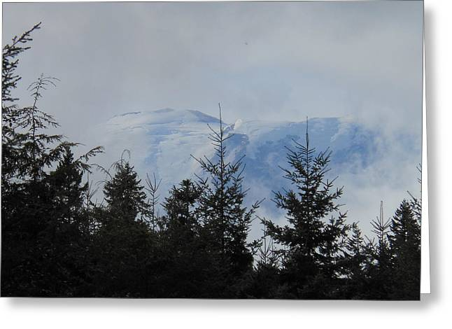 Stormy Day At Mt. Rainier Greeting Card by Kay Gilley
