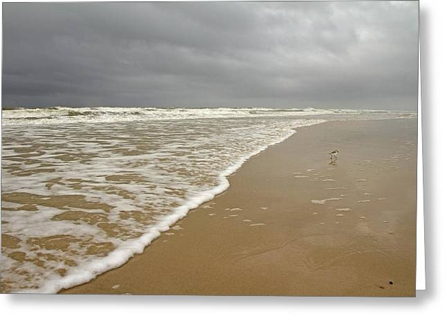 Stormy Ocean Greeting Cards - Stormy Day on Topsail Greeting Card by Betsy C  Knapp
