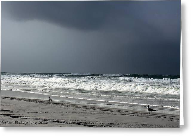 Panama City Beach Greeting Cards - Stormy Greeting Card by Debra Forand