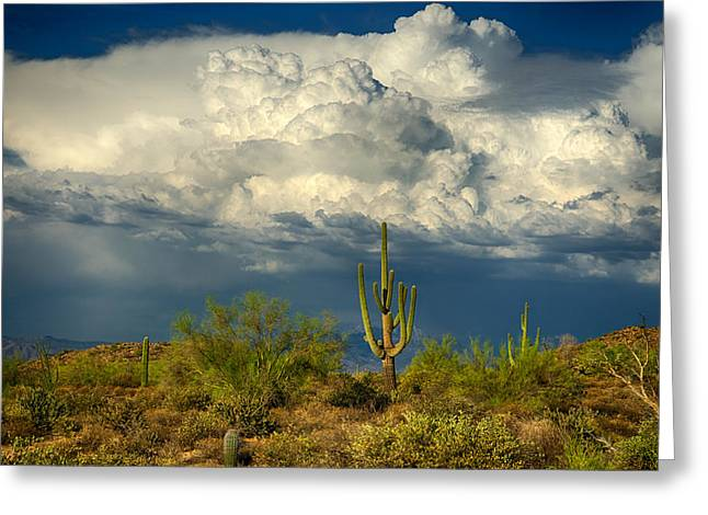 Monsoon Clouds Greeting Cards - Stormy Desert Skies  Greeting Card by Saija  Lehtonen