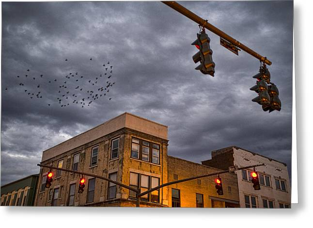 Bird Scape Greeting Cards - Stormy Flight Greeting Card by Jim Pearson