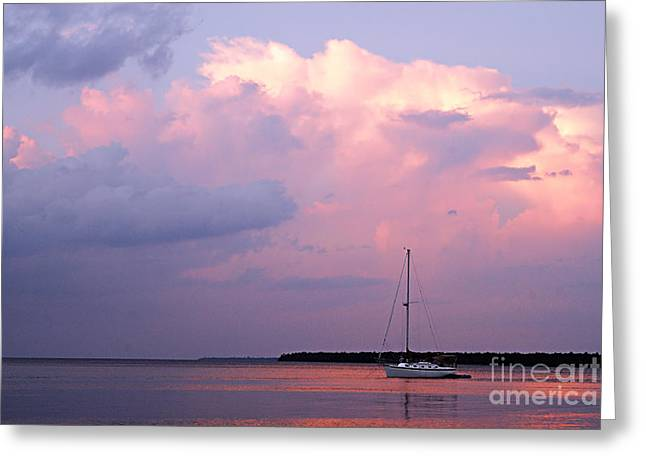 Sailboat Images Greeting Cards - Stormy Seas Ahead Greeting Card by Larry Ricker