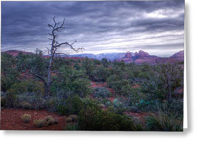Firsts Pyrography Greeting Cards - Stormy Sedona Greeting Card by John Ferebee