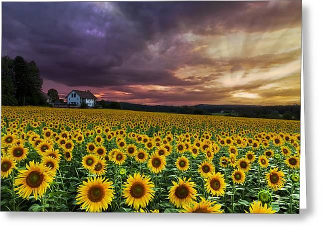 Stormy Sunrise Greeting Card by Debra and Dave Vanderlaan