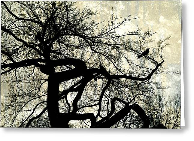 Manipulated Photography Greeting Cards - Stormy Weather  Greeting Card by Ann Powell