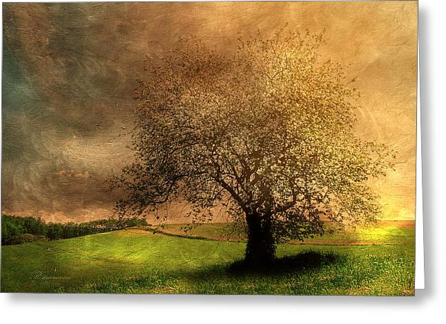 Purchase Art Greeting Cards - Stormy Weather Greeting Card by Georgiana Romanovna