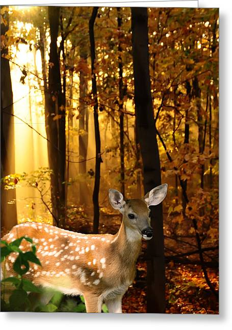 Storybook Greeting Cards - Storybook Bambi Photo Greeting Card by Randall Branham
