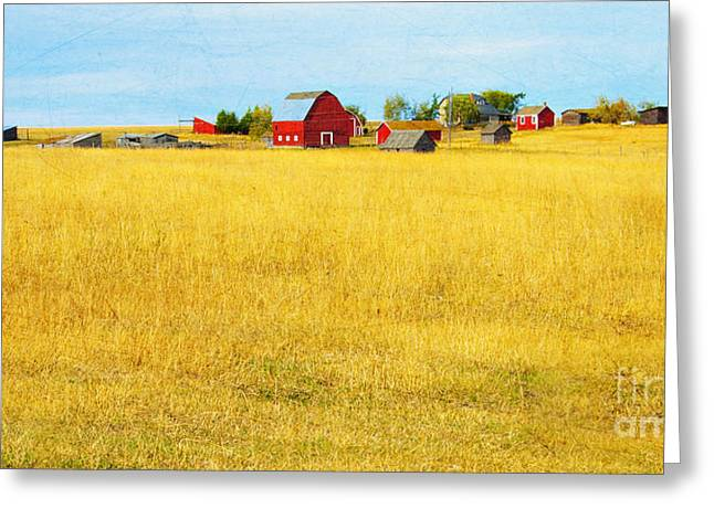 Outbuildings Greeting Cards - Storybook Farm Greeting Card by Theresa Tahara
