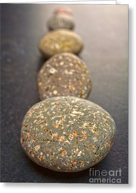 Stepping Stones Greeting Cards - Straight Line of Speckled Grey Pebbles on Dark Background Greeting Card by Colin and Linda McKie