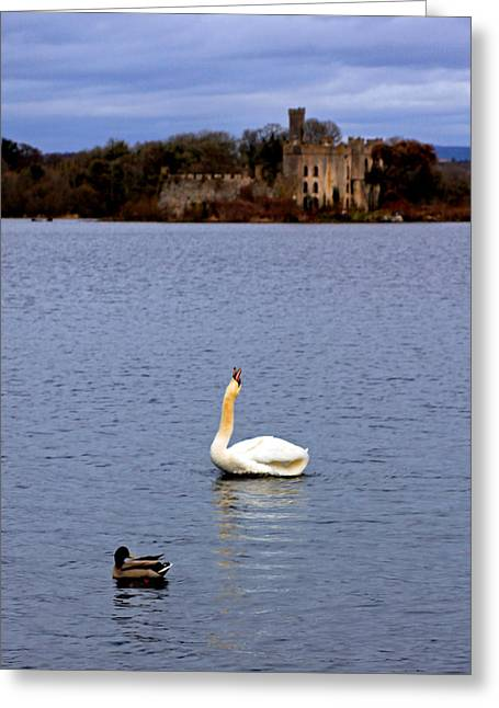 Castle. Birds Greeting Cards - Straight Necked Goose Greeting Card by Jennifer  Robin