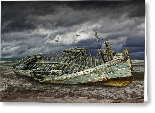 Wooden Ship Greeting Cards - Stranded Wooden Shipwreck Greeting Card by Randall Nyhof