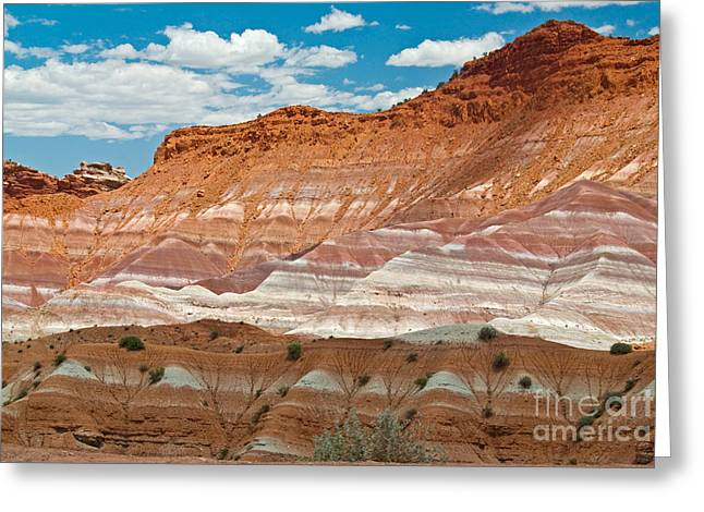 Paria Greeting Cards - Stratified Cliffs Greeting Card by Richard and Ellen Thane