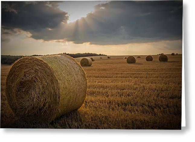 Cabin Wall Greeting Cards - Straw Bales and Sunrays  Greeting Card by David Dehner
