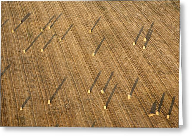Agronomy Greeting Cards - Straw Bales, Chenevelles Greeting Card by Laurent Salomon