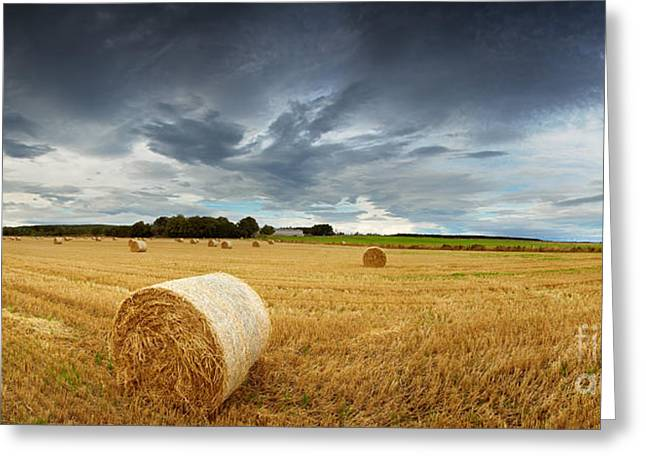 Summer Storm Photographs Greeting Cards - Straw bales pano Greeting Card by Jane Rix