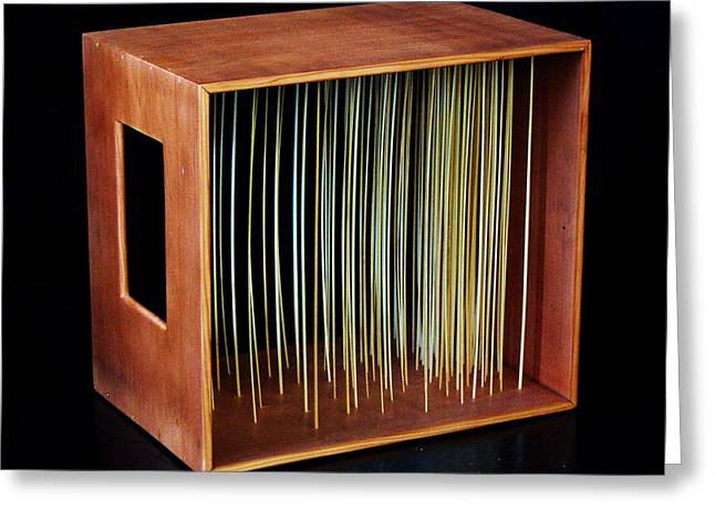 Grass Sculptures Greeting Cards - Straw in Box Greeting Card by Daniel P Cronin