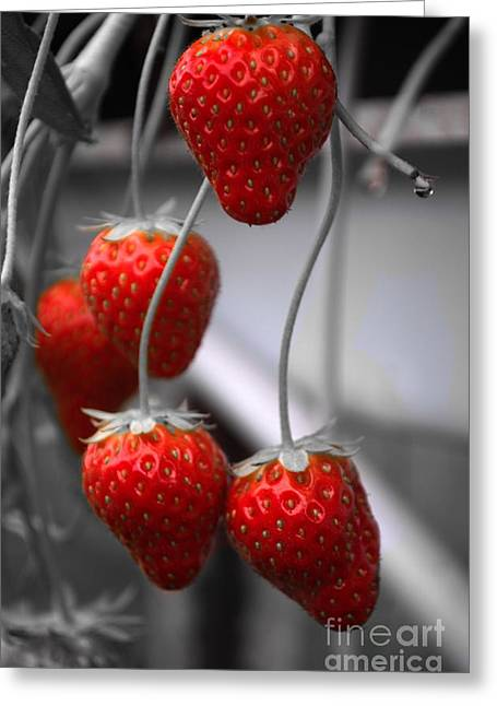 Sweet Touch Greeting Cards - Strawberries Greeting Card by Michelle Meenawong