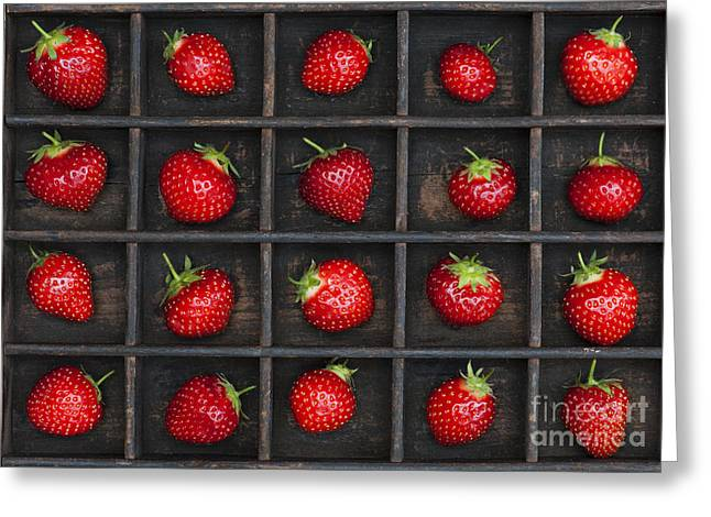 Food And Beverage Greeting Cards - Strawberry Grid Greeting Card by Tim Gainey