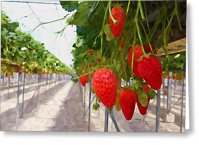 Cultivation Paintings Greeting Cards - Strawberry hunting Greeting Card by Lanjee Chee