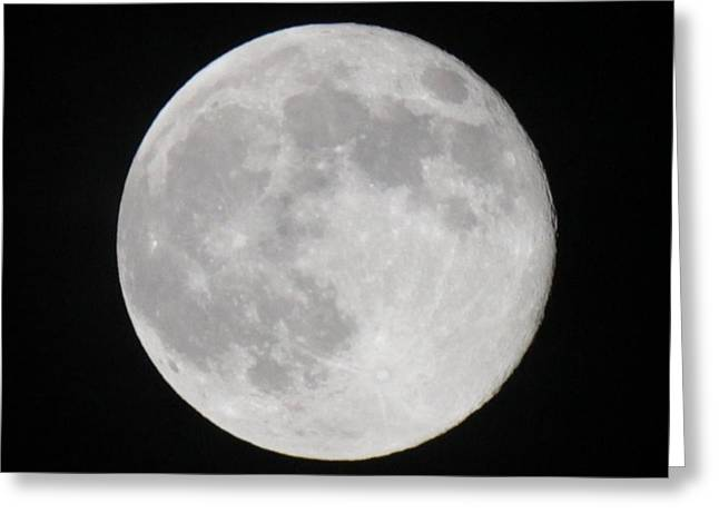 Strawberry Pyrography Greeting Cards - Strawberry Moon 2013 Greeting Card by Robert Ferreira