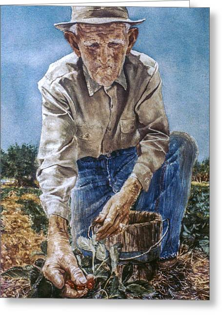 St Petersburg Florida Paintings Greeting Cards - Strawberry Picker Greeting Card by Kevin Thomas
