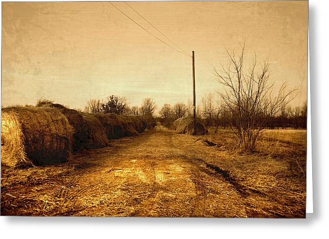 Rural Indiana Greeting Cards - Strawmill Road Greeting Card by Mark Orr