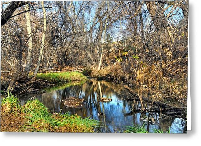 Granite Dells Reflections Greeting Cards - Stream at the Dells Greeting Card by Thomas  Todd