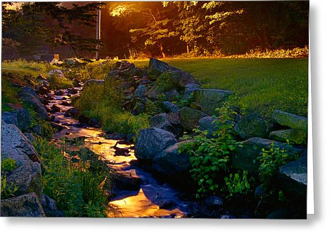Stream By Streetlight Greeting Card by Mark Miller